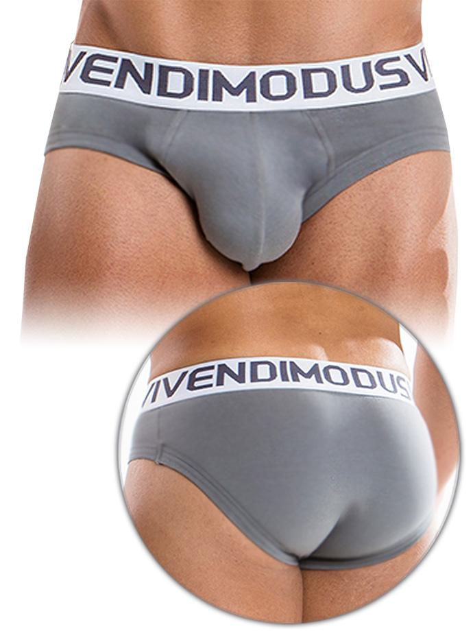 Modus Vivendi - Weekly Brief Grey
